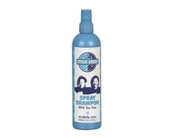 Stylin Dredz Spray Shampoo